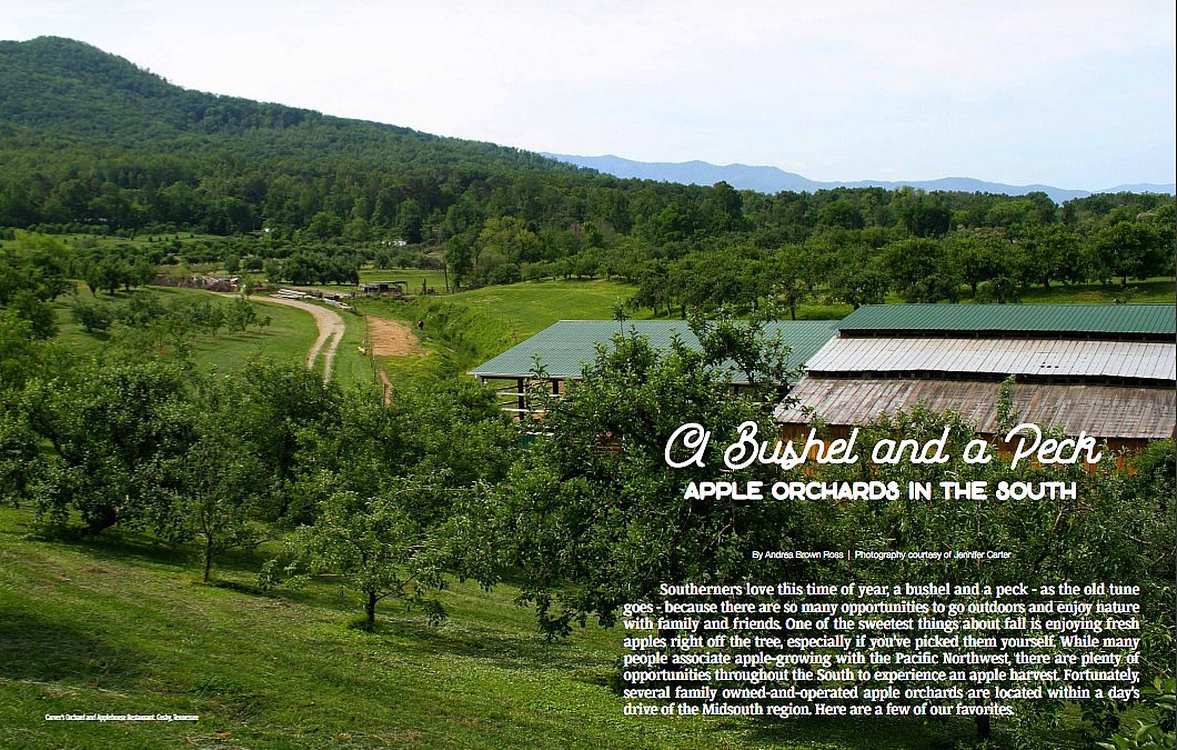 Desoto Magazine, A Bushel and a Peck, Apple Orchards in the South, September 2017